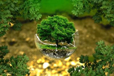 Les enjeux de transition et de conversion écologique à l'école de Laudato si' - (présentiel)