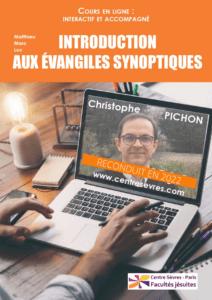 Affiche cours en ligne Pichon Synoptiques